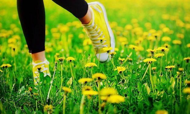 Vivir cerca de la naturaleza hace que la gente sea más feliz